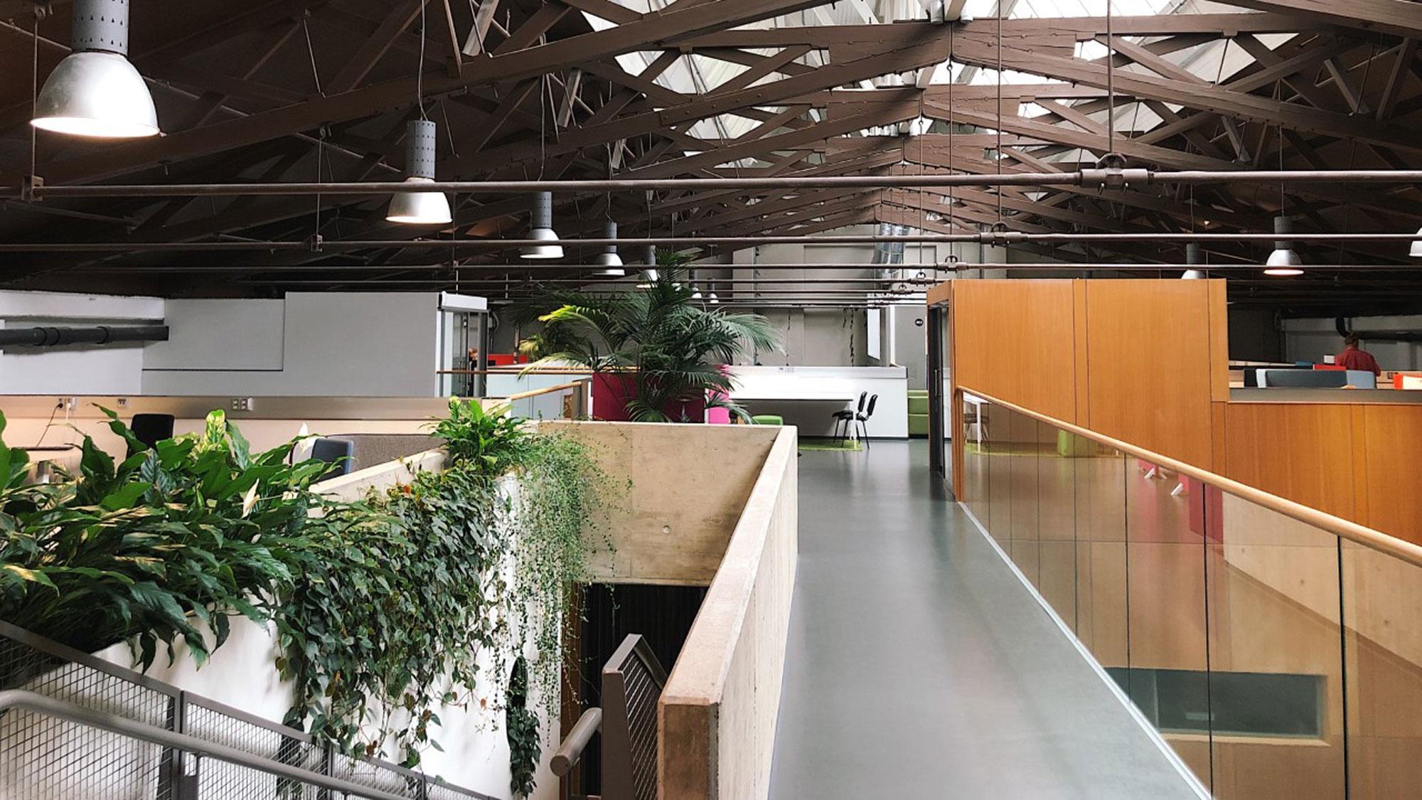 Logomon Coworking-tila muodostaa moniammatillisen yhteisön